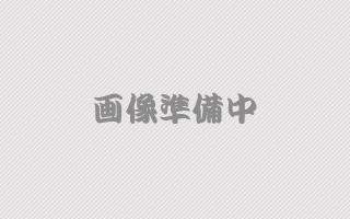 広島かき10個セット